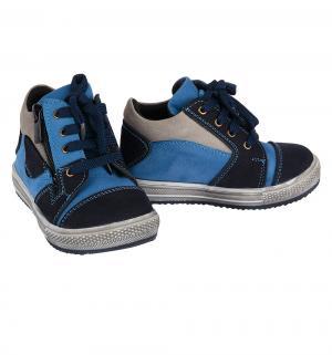 Ботинки , цвет: синий Vitacci
