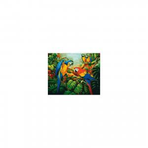 Холст с красками по номерам Яркие попугаи 40х50 см Издательство Рыжий кот