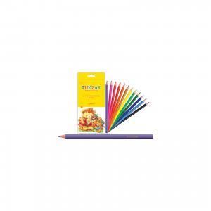 Набор цветных карандашей в пластиковом корпусе, 12 цв. TUKZAR
